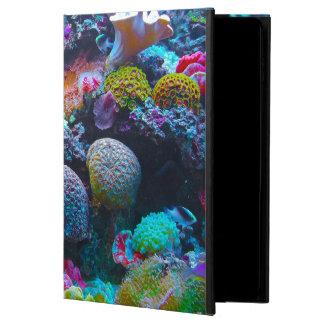 豪華な珊瑚礁