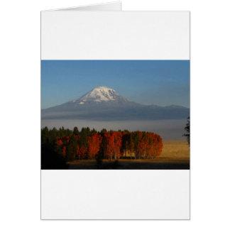 豪華な秋色SCENICS カード