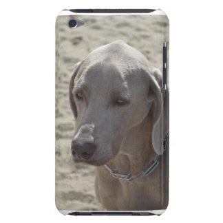 豪華なWeimaraner Case-Mate iPod Touch ケース