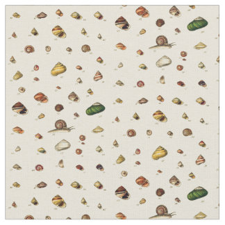 貝の属のモノグラフ ファブリック
