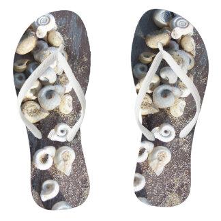 貝の履物 ビーチサンダル