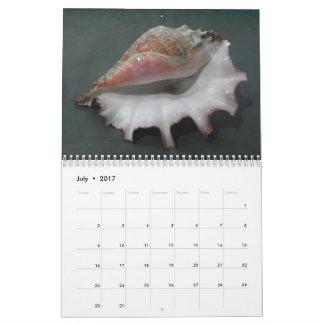貝の2017カレンダー カレンダー