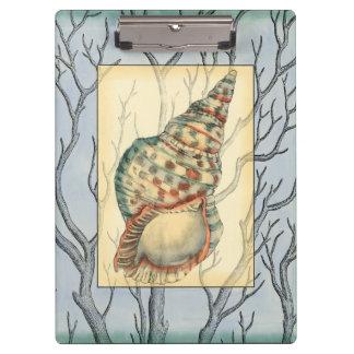 貝殻およびツリーブランチ クリップボード