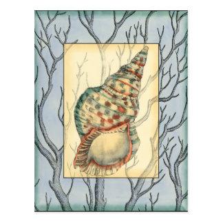 貝殻およびツリーブランチ ポストカード