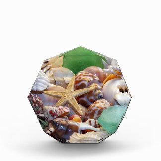 貝殻のアクリルの八角形賞 表彰盾