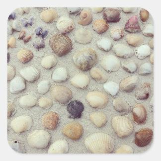 貝殻のコレクション スクエアシール