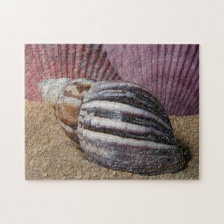 貝殻のパズル ジグソーパズル