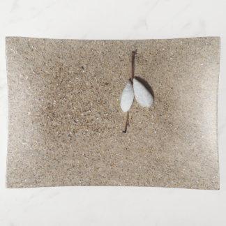 貝殻のビーチの大きい装身具の皿のjjhelene トリンケットトレー