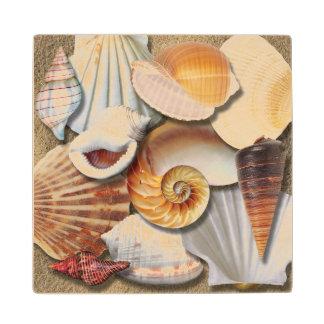 貝殻のモンタージュ木コースター ウッドコースター