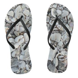 貝殻の多くそして多く ビーチサンダル