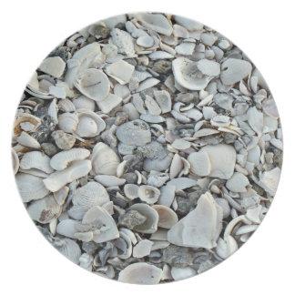 貝殻の多くそして多く プレート
