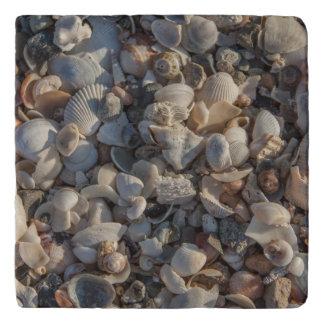 貝殻の山 トリベット