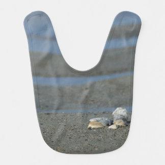 貝殻の山 ベビービブ
