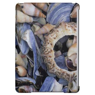 貝殻、ケープタウン、西ケープ州 iPad AIRケース