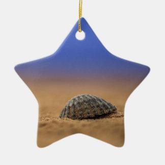 貝殻 セラミックオーナメント