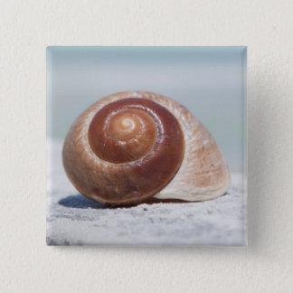 貝殻|セント・ピーターズバーグ、フロリダ 5.1CM 正方形バッジ