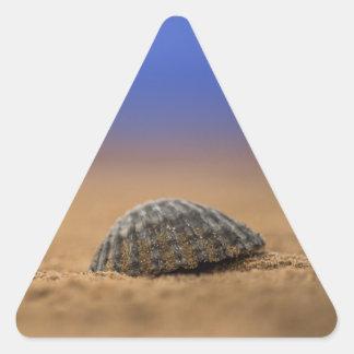 貝殻 三角形シール