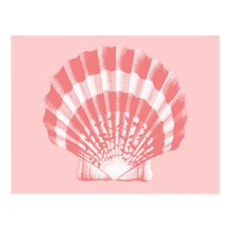 貝殻-珊瑚のピンクおよび白 ポストカード