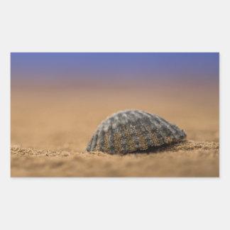 貝殻 長方形シール