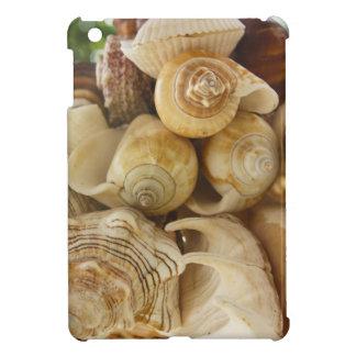 貝殻 iPad MINIケース