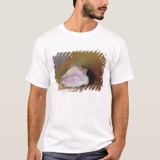 貝1912年 Tシャツ