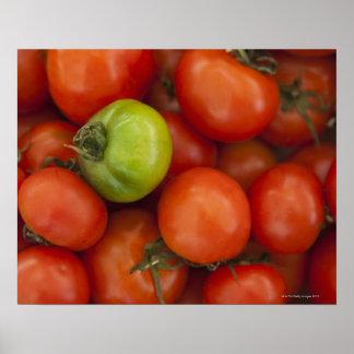 販売のためのaの赤いおよび緑のトマトは署名します ポスター