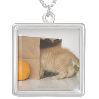 買い物袋の中の子ネコ シルバープレートネックレス