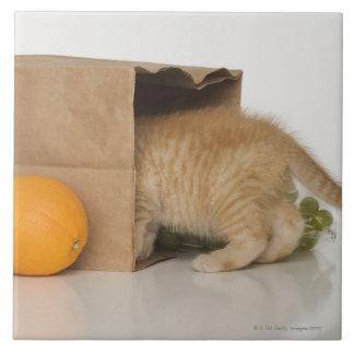 買い物袋の中の子ネコ タイル