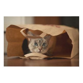 買い物袋の子ネコ ウッドウォールアート