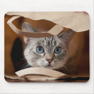 買い物袋の子ネコ マウスパッド