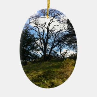 賢い木 セラミックオーナメント