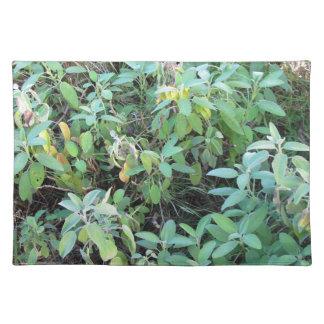 賢明な植物 ランチョンマット