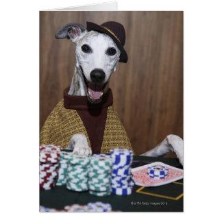 賭博のテーブルのWhippet服を着せられた犬 カード