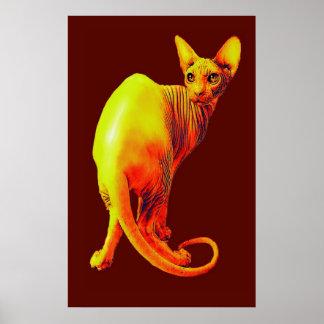 赤いおよびオレンジsphynx猫 ポスター
