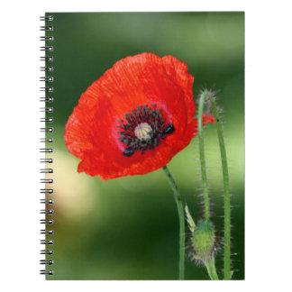 赤いけし油の写真のノート ノートブック