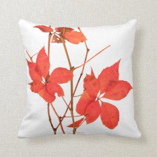 """""""赤いつる植物""""の白い装飾用クッション クッション"""