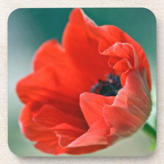 赤いアネモネの花のコルクのコースター コースター