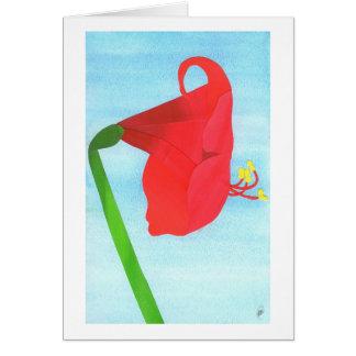赤いアマリリス カード