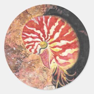 赤いオウムガイ ラウンドシール