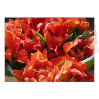 赤いオランダのチューリップのアムステルダムの花の市場のメッセージカード カード