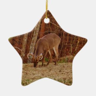 赤いカシのカムフラージュの雄鹿の木びき台のシカの食べ物を与えること セラミックオーナメント