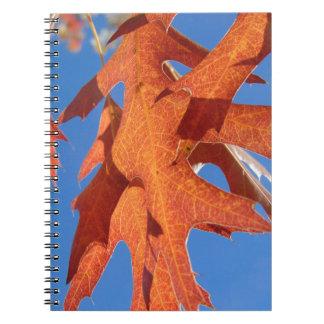 赤いカシの葉 ノートブック