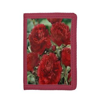 赤いカーネーションによっては財布が開花します