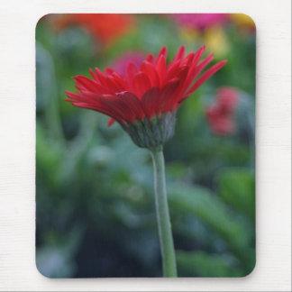 赤いガーベラのデイジーの花のmousepadのおもしろいの花柄のギフト マウスパッド