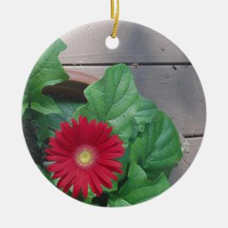 赤いガーベラのデイジーの花 セラミックオーナメント