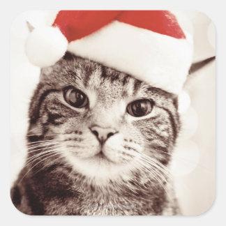 赤いクリスマスの帽子を身に着けている国内虎猫猫 スクエアシール