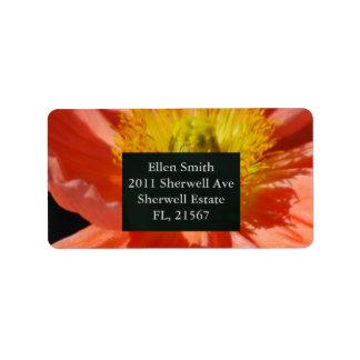 赤いケシの花および意味 ラベル