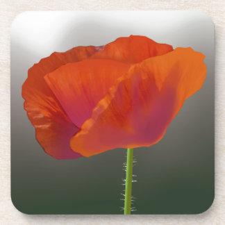 赤いケシの花 コースター