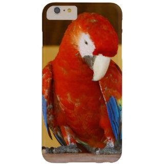 赤いコンゴウインコ BARELY THERE iPhone 6 PLUS ケース