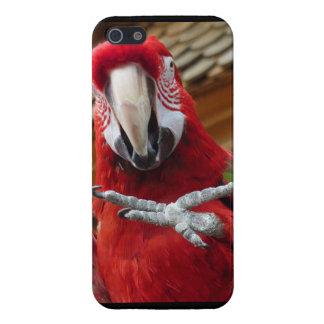 赤いコンゴウインコHi5のiPhone 5/5Sの光沢のある終わりの箱 iPhone SE/5/5sケース
